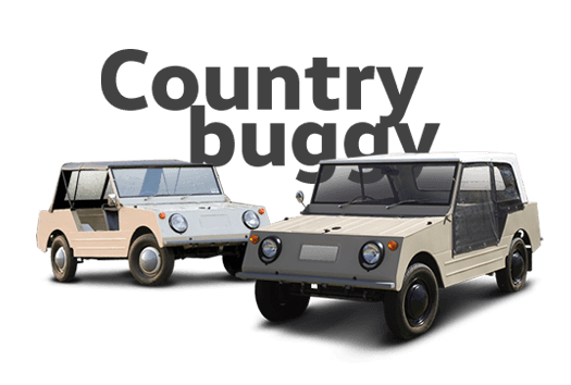 Country-Buggy