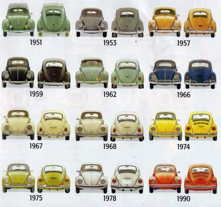 Beetle evoluce