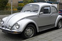 vw_beetle_silver_bug